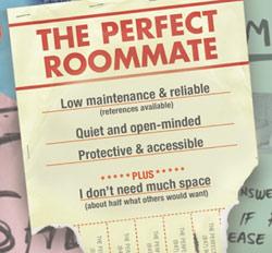 room-mate-ad