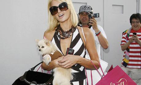 Paris Hilton has all you 'faggots' all figured out...