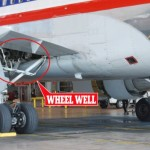 Teenage stowaway survives in the wheel well of Hawaiian Airlines flight or did he?