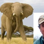 Internet cheers after hunter Ian Gibson trampled by elephant he hoped to slay.