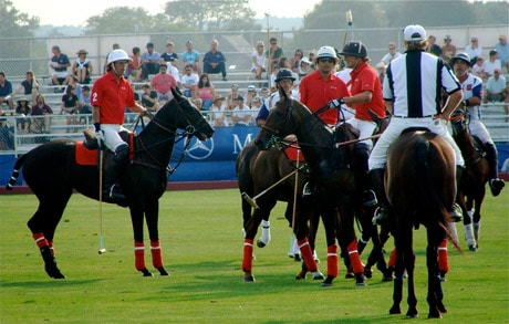 polo-players1