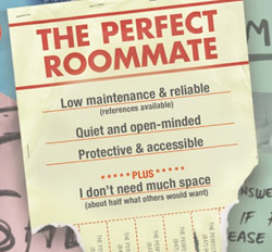 room-mate-ad