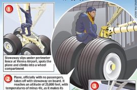 Romanian stowaway survives 90 minute flight holding onto an airplane wheel.