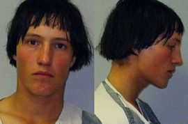 It's time to meet Levi Detweiler, the Amish horse buggy bandit.