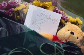 Why did Theresa Riggi murder her 3 children?