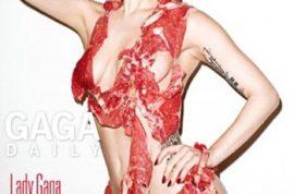 Lady GaGa's Meat Bikini: Too Busy Wearing Food to Eat it?