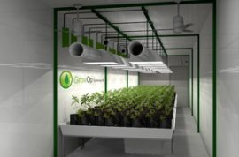 Have you seen the latest cannabis factory coming to a town near you?