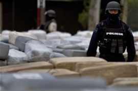 Mexican authorities make biggest drug bust in decade.