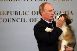 Vladimir Putin wants you to help him figure out a new name for his Bulgarian puppy.
