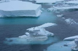 Mysterious Block of Wood Discovered on Iceberg at Magnetic South Pole
