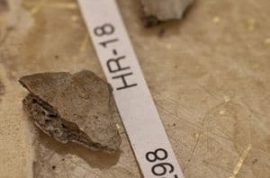 Scientists make historic discovery of 11,500-year-old toddler bones in Alaska