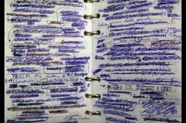 My Weekly Diary.