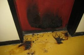 Man gets revenge on girlfriend by lighting his feces on fire.