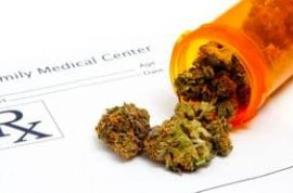 Scientists set to develop cannabis like drugs to relieve pain without the high.