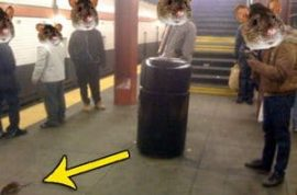 Have you had a chance to play with the ubiquitous Herald Square subway rat yet?