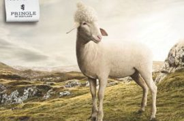 Pringle of Scotland ditches models in latest campaign for sheep.