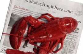 Man arrested for stuffing live lobsters down his cargo shorts