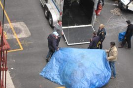 Carriage horse collapses and then dies on West 54th st.