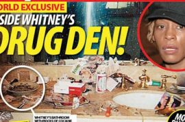 Drug dealer reveals he sold Whitney thousands of dollars worth of cocaine prior to her death.