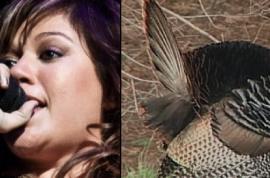 "PETA: ""Very disturbed"" by Kelly Clarkson's birthday plans"