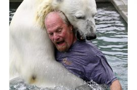 Video: So what if Mark Dumas likes to get in the pool with his pet polar bear….?