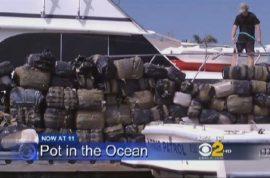 180 floating bales of marijauna found in the ocean.