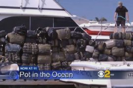 180 floating bales of marijauna found in the ocean.