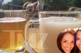 Video: Fear Factor's donkey semen drinking stunt makes it on Danish tv.