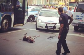 Video: Cops brutally shoot dog trying to protect its owner who had seizure.