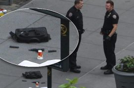Empire State building shooting was the work of disgruntled fired co worker. Killed his ex boss.