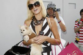 Oh my! Paris Hilton reckons 'gays are disgusting and most of you faggots have AIDS.'
