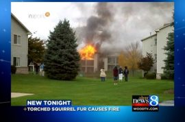 Man causes fire that leaves dozens homeless after attempting to cook dead squirrel.
