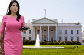 Jill Kelley would like to remind you that Paula Broadwell is a criminal.