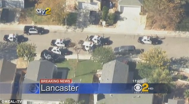 Bank robbery car chase