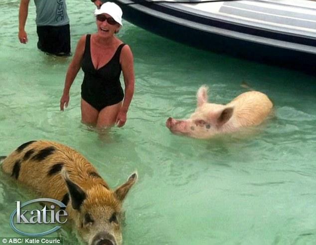 Judge Judy on holidays