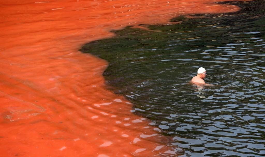 Bondi Beach turns blood red.