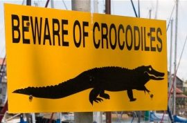 There are now 15 000 escaped crocodiles somewhere in South Africa waiting to eat you.
