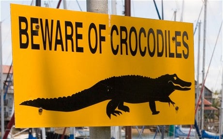 15 000 escaped crocodiles