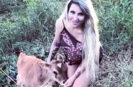 Oh really? Brazilian model breastfeeds herd of calves on street.