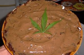 Oh no! Ohio police chief accidentally eats daughter's weed-cake and goes nuts.