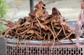 Rat meat is now disguised as lamb meat in China. Demand for cheap meat soars.