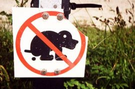 Hmm, town cracks down on unscooped dog poop and mails it back to owners.