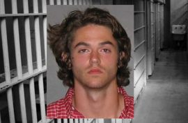 Grand Theft Auto fan, Zachary Burgess arrested after deciding to play video game in real life.