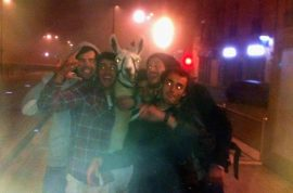 Oh really? Drunk French teens steal llama. Merry tram ride…