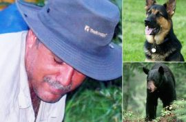Marco Lavoie, stranded hiker who ate his dog wants new one.