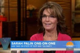 Oh really? Sarah Palin explains how health care really ought to work.