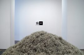 Stefan Bondell, artist opens exhibition on Black Friday so viewers can roll around in one million dollars worth of shredded notes.