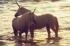 Oh really? 2 unicorns for sale on craigslist, serious inquiries only.