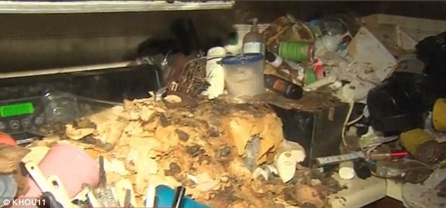 130 cats rescued from home of 60 year old twin sisters