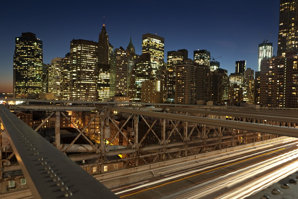Manhattan Bridge dweller